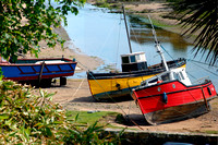 Rosebud and old boats at Abersoch inner harbour BD60